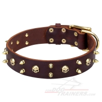 'Hard Rock' Leather Canine Collar with Brass-Plated Spikes and Skulls