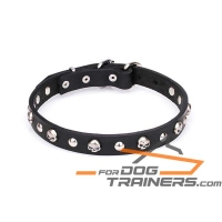 'Gothic Inspiration' Leather Dog Collar with Skulls and Half-sphere Studs