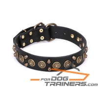 'Regal Heritage' Funky Leather Collar for Dog with Brass Plated Pyramids and Old Bronze-Like Studs 1 1/2 inch wide
