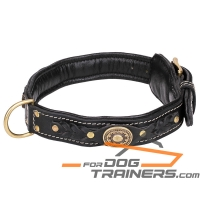 'Pleasant Touch' Nappa Padded Leather Dog Collar with Decorative Elements