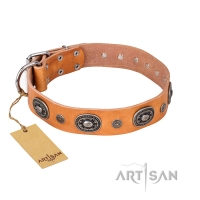 'Twinkle Twinkle'  FDT Artisan Incredible Studded Tan Leather Dog Collar