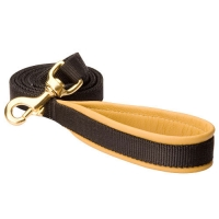 Nylon dog leash with support material on the handle - L10
