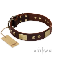 'Shining Armour' FDT Artisan Brown Leather Dog Collar with Decorations