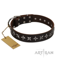 """Stars of Glory"" FDT Artisan Brown Leather Dog Collar for Comfortable Walking"