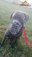 Multipurpose Super Comfortable Wire Cage Muzzle Specially Designed for Mastiff