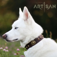 FDT Artisan Collar- Perfect Present for *Titan Siberian Husky