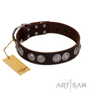 """High and Mighty"" FDT Artisan Classy Brown Leather Dog Collar with Embellished Brooches"