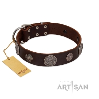 """Flashy Woof"" FDT Artisan Brown Leather Dog Collar with Chrome Plated Brooches"