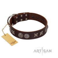 """Silver Sunset"" Designer Handmade FDT Artisan Brown Leather Dog Collar"