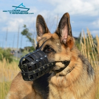 *Brynn Wearing Lightweight  Leather German Shepherd Basket Muzzle