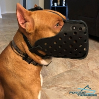 Attack Training Leather Pitbull Muzzle for Big Breeds
