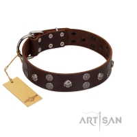 """Skull Valley"" Handcrafted FDT Artisan Brown Leather Dog Collar with Skulls"
