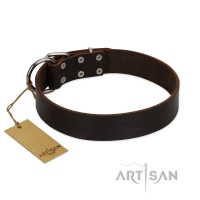 """Calm Walk""  Handmade FDT Artisan Brown Leather Dog Collar"