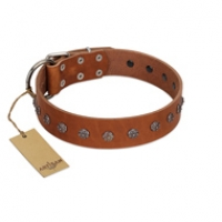 """Daintiness"" Designer Handmade FDT Artisan Tan Leather Dog Collar with Silver-Like Adornments"