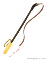 Dog Training Agitation Whip - 30% DISCOUNT