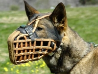German Shepherd Leather Basket Muzzle Well-Ventilated for Training
