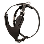 Agitation / Protection / Attack Leather Dog Harness - H8