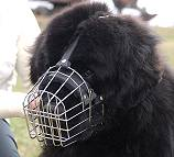 Newfoundland Wire Basket Dog Muzzles Size Chart - Newfoundland muzzle - M4light