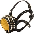Royal Design Padded Leather Dog Muzzle with Handset Studs