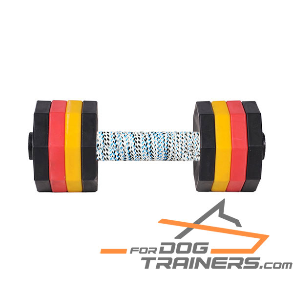 Training Dog Dumbbell with Plastic Weight Plates