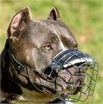 NEW Pitbull Revolution Design Wire Dog Muzzle - M9