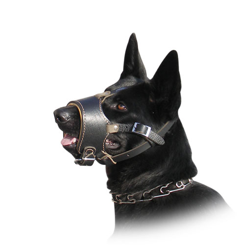 GSD leather dog muzzle