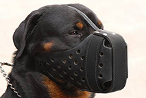 "Leather dog muzzle ""Dondi"" style For Rottweiler - M55"