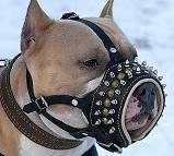 Royal Spiked Leather Dog Muzzle - product code M61