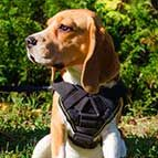 Brand New Multifunctional Nylon Beagle Harness