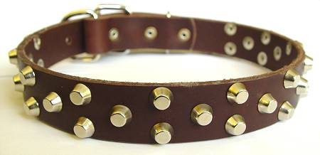 brown Walking leather dog collar with Nickel Pyramids