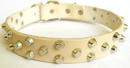 white leather dog collar decorated with pyramids
