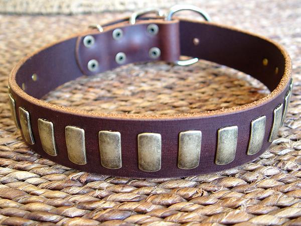 Jaulas, Correas, Collares etc Leather-dog-collar-wide-large-breed-2